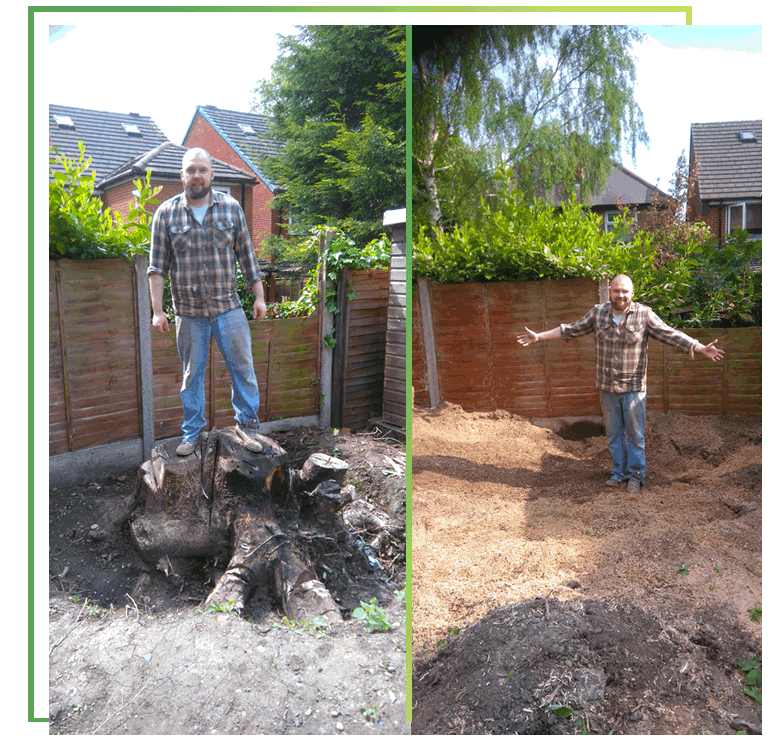tree-stump-removal-west-midlands