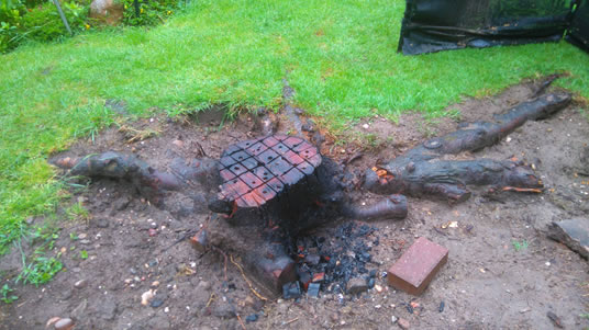 cherry-tree-stump-removal