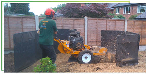 stump-removal-midlands