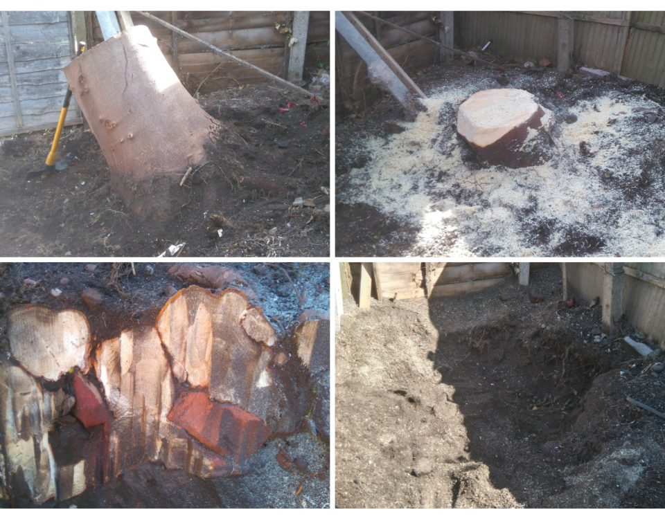 stump-removal-tamworth